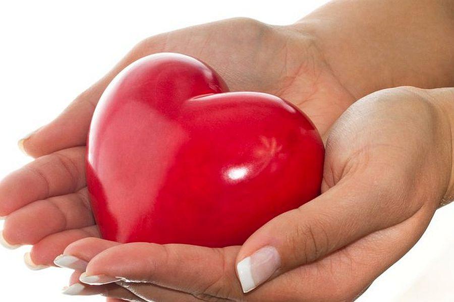 Дарим своё сердце в подарок 145